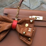 Hermes gloves and clip