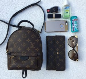 louis-vuitton-mini-palm-springs