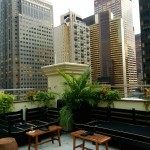 Ava Lounge rooftop NYC